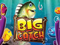 Big Catch – Novomatic